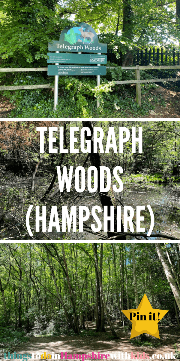 Telegraph Woods is a small public woodland in Eastleigh, Southampton that many locals know well. It's a great place to visit for the whole family by Laura at Things To Do In Hampshire With Kids