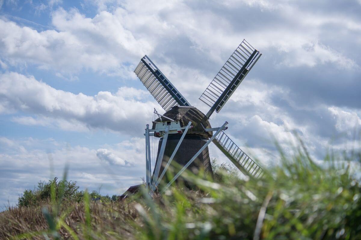 Windmill through the grass