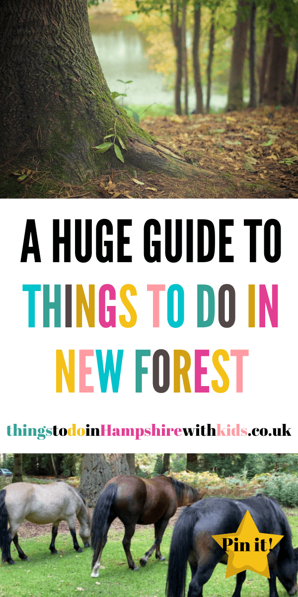 Looking for things to do in New Forest? We have covered everything from inside things to do to outside walks and leisure activities by Laura at Things To Do In Hampshire With Kids