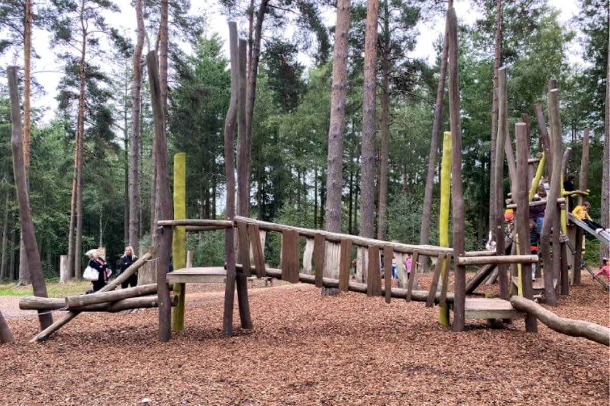 Alice Holt Country Park playground