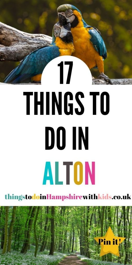 Here are 17 things to do in Alton, Hampshire that the whole family can do together. We've included everything from museums to walks and days out by Laura at Things To Do In Hampshire With Kids