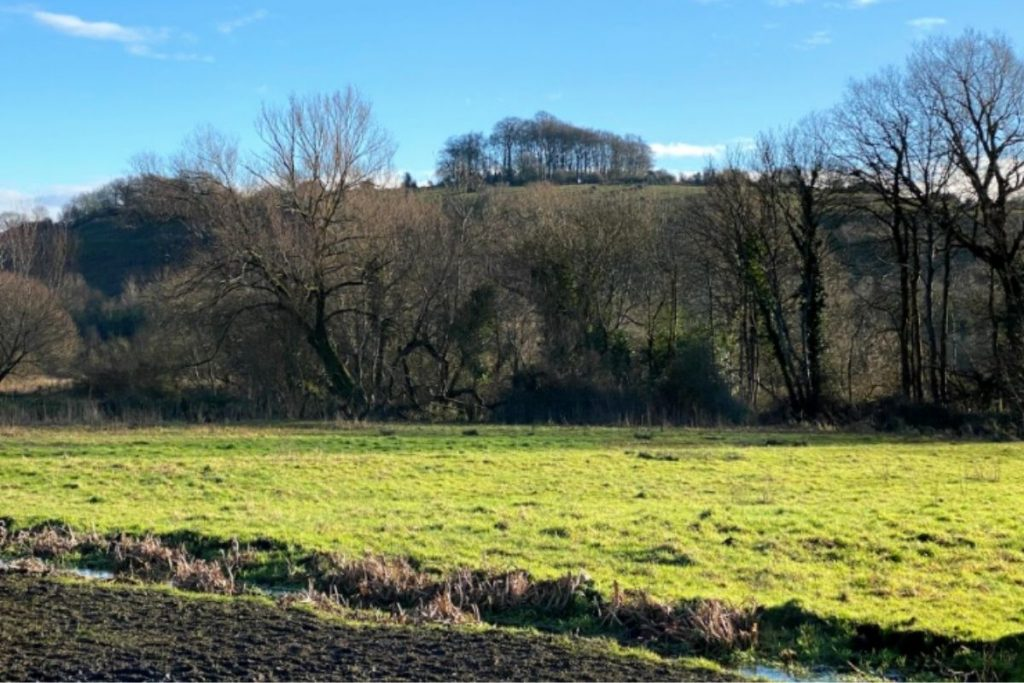 St Catherine's Hill, Winchester in Hampshire