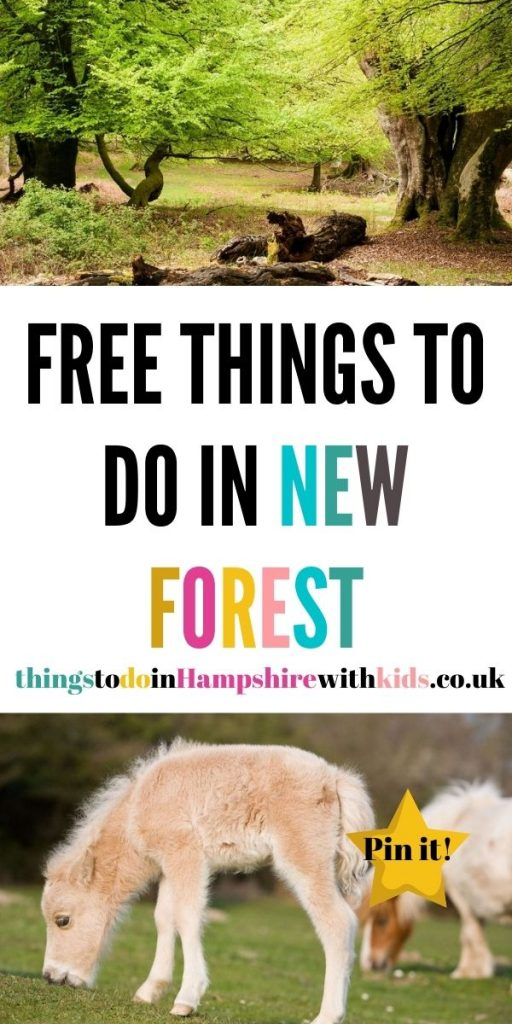 This is a huge list of free things to do in the New Forest. We've included everything from museums and family walks by Laura at Things To Do In Hampshire With Kids