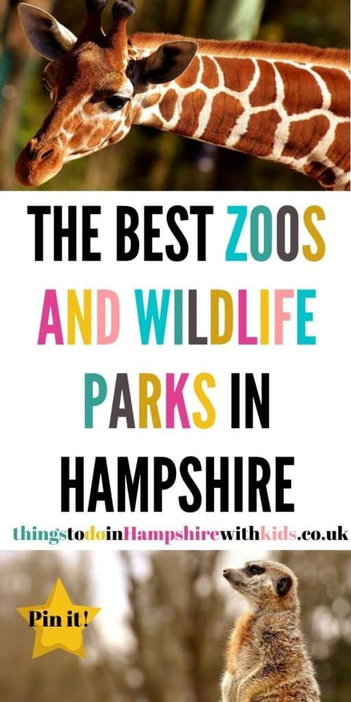 These are the best zoos and wildlife parks in Hampshire. We've included everything from farms, theme parks and zoos by Laura at ThingsToDoInHampshireWithKids.co.uk