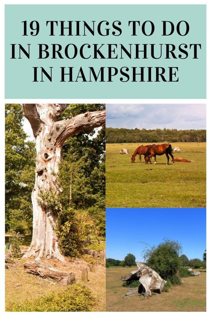 These are the best things to do in Brockenhurst for the whole family. We have included everything from country parks to museums by Laura at Things to do in Hampshire with kids